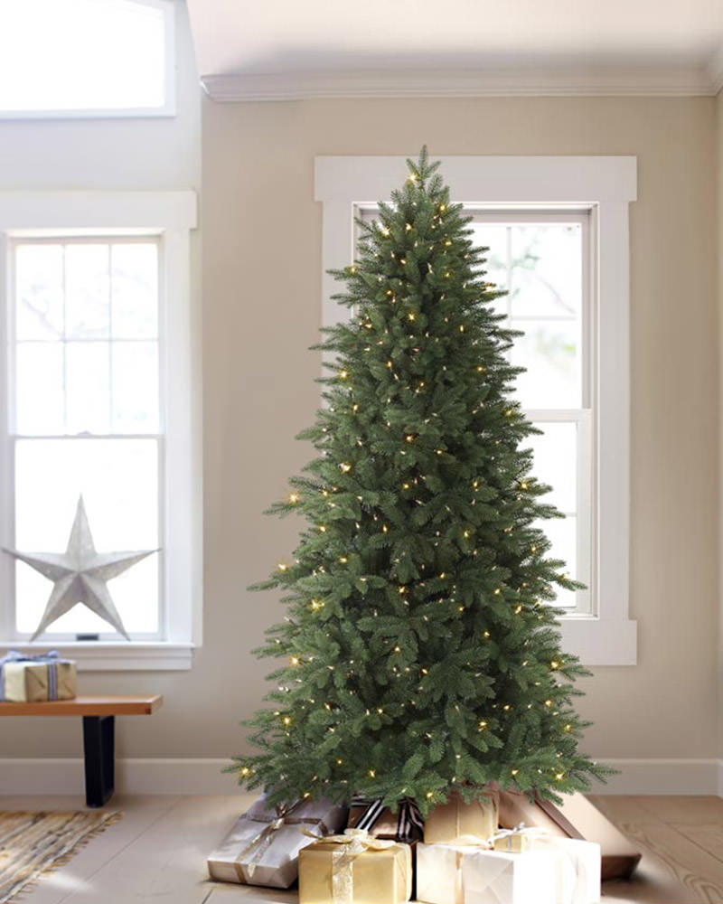 8 Ft Real Christmas Tree