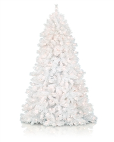 6 to 7 ft Colourful Christmas Trees | Treetopia UK