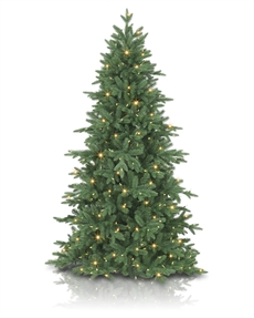 Addison Spruce <span>|7'|Slim 47"